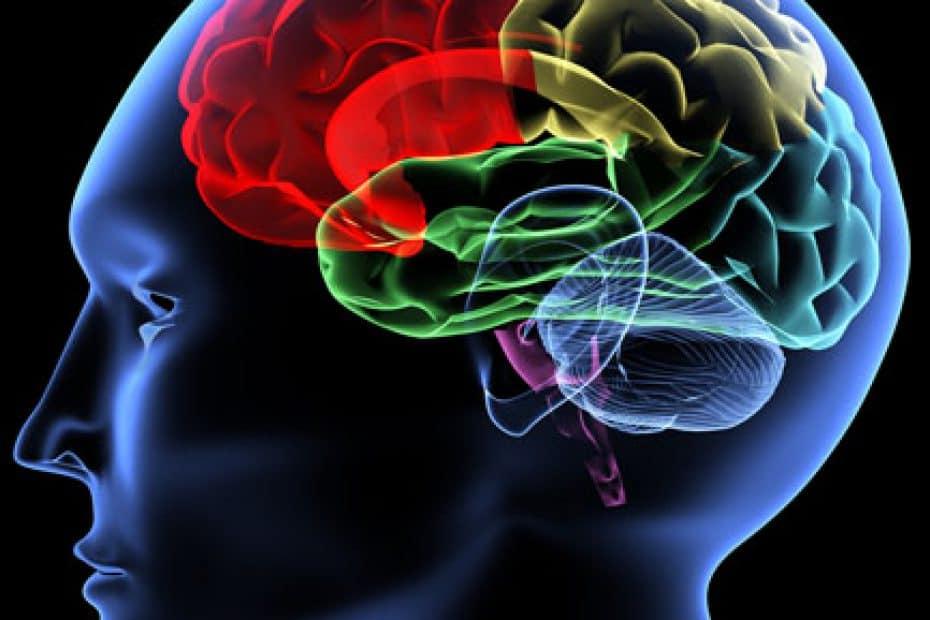 cerebro-3d-dor-cabeca