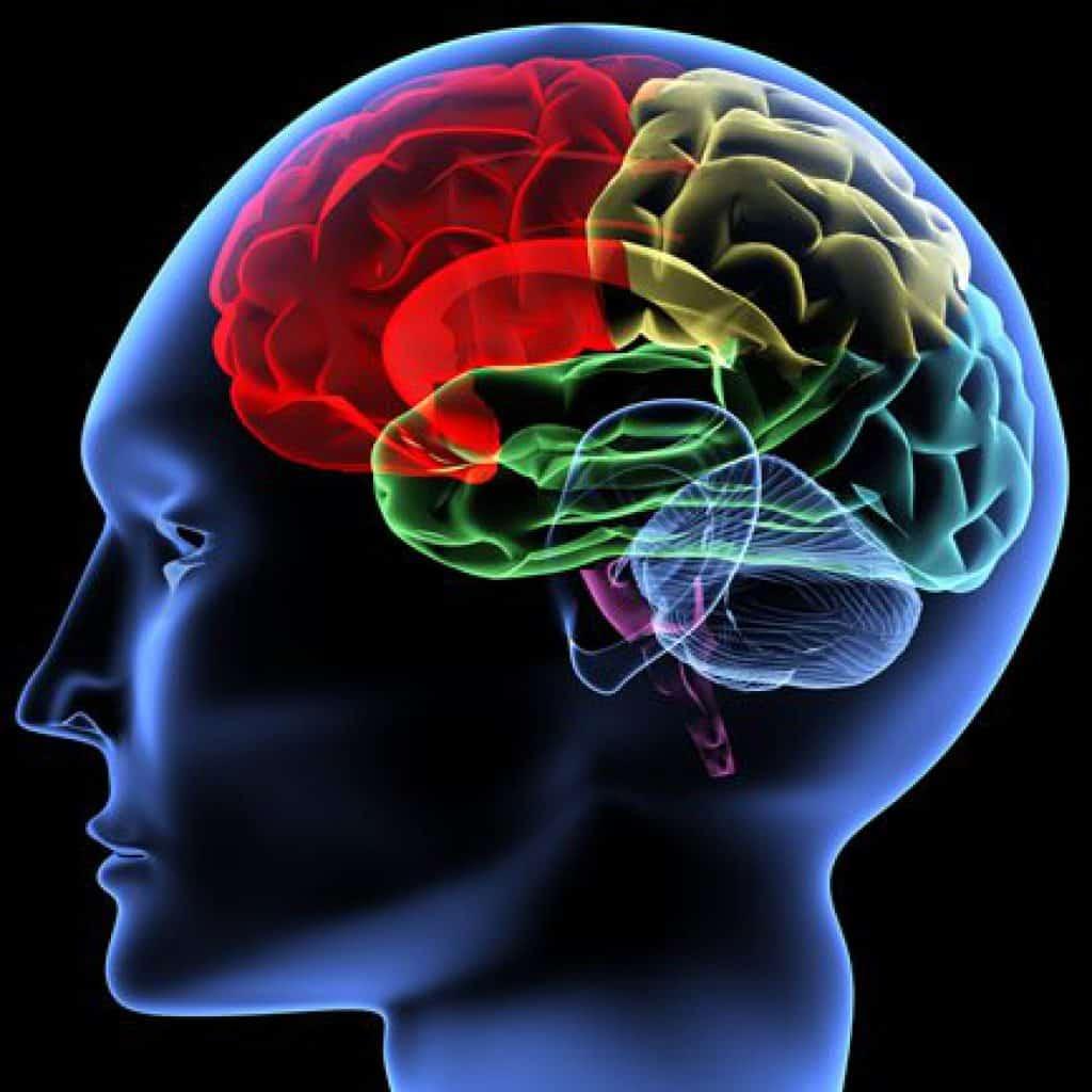 accident vascular cerebral de tratament