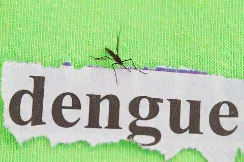Dengue: prevenção